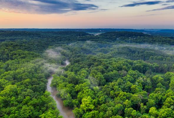 imagen Conferencia | La desforestación en la Amazonía y sus efectos en el clima de América del Sur al este de los Andes